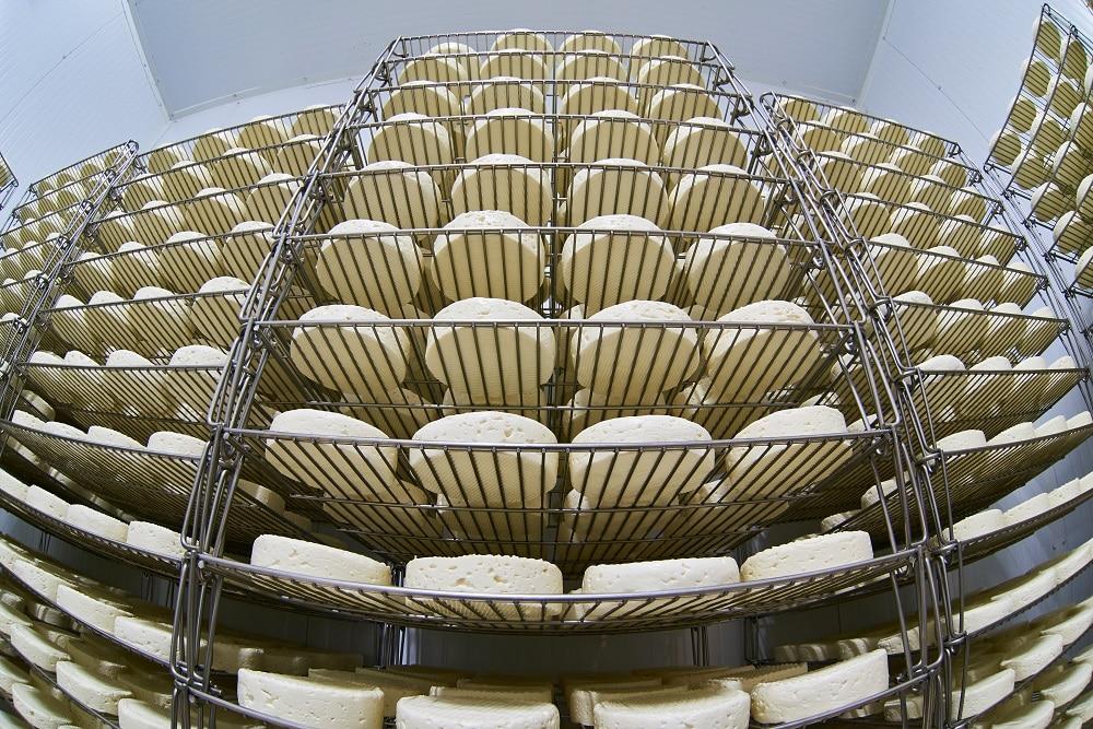 Fromage empilé sur des étagère, agroalimentaire