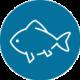 Icône poissonnerie